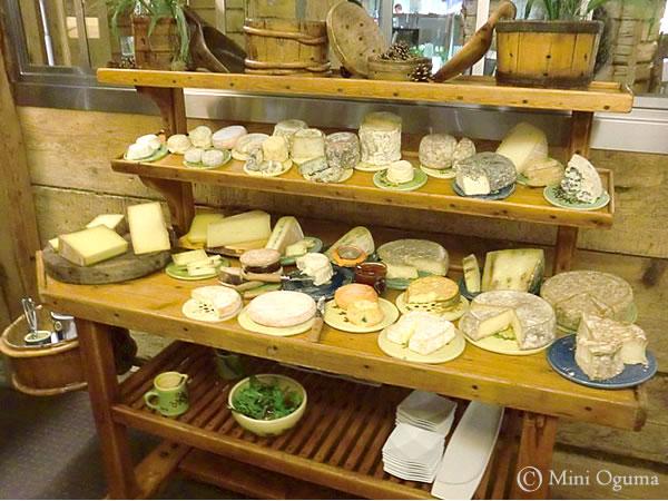 レストランのチーズ